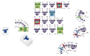 Spielkarten- 6 le prendi!