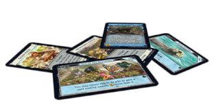 Spielmaterial, Spielkarten- Dominion: Menagerie