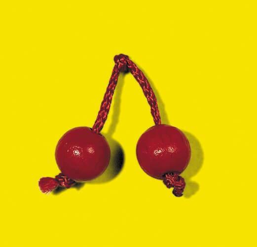 Früchte- Obstgarten